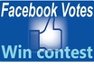 manage 110 facebook vote,apps for any contest,website even photo