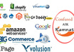 do bigcommerce,Magento,prestashop,Shopify, Amazon,ebay, volusion customisation