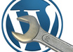 fix all Your WordPress Website Issues,Errors, Bugs