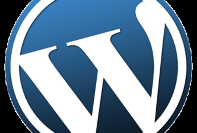 set you up with a wordpress website