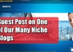 guest post your article on one of my niche blogs