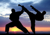introduce you to Modern Combat Martial Arts