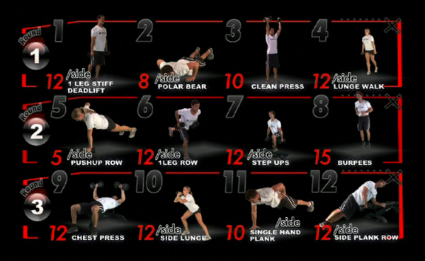 Create a one month workout program fiverr