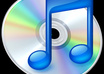 teach you how to put your DVDS into Itunes