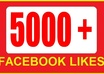 give you 5,000++ Real [PERMANENT] facebook likes or fans to your facebook fanpages all likes deliver within few hours