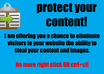 protect your website from copy and paste