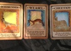 interpret your dream AND do a Tarrot card reading