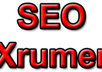 make 7500 backlinks using Xrumer