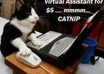 be your PERSONAL Assistant or Virtual Assistant
