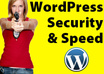 teach You How to Optimize WordPress For Speed And Security