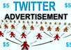 promote your website or blog to 17000 twitter followers for 1 month small1