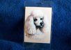mail you 2 Poodle Dog luggage tags
