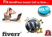 install, Fix, Move, Customize,Optimize WordPress Blog Related Themes and Also Install Plugins with Proper Backup