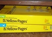 extract data from Yellow pages