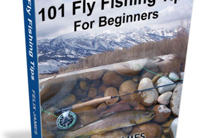 Give you 101 fly fishing tips for beginners free bonus for Fishing for beginners