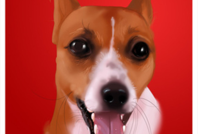 create a digital painting of your pet