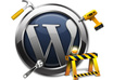 troubleshoot your wordpress install